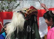 さくら祭りの獅子舞いのの様子