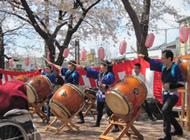 さくら祭りの太鼓演舞の様子